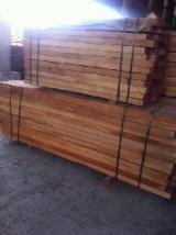 Beech (Europe) Planks (boards)  from Romania, Ramnicu Valcea