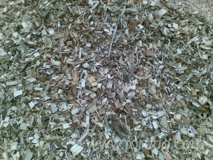 Wood-Chips---Bark---Off-Cuts---Sawdust---Shavings--Wood-Chips-From-Sawmill