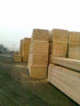 Softwood  Sawn Timber - Lumber - 24+ mm Fresh Sawn Spruce  - Whitewood from Romania, Gorj