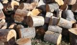 Buy Or Sell  Firewood Woodlogs Cleaved Romania - Firewood Cleaved - Not Cleaved, Firewood/Woodlogs Cleaved, Beech (Europe)
