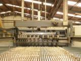 Used 1st Transformation & Woodworking Machinery Spain - Saws, Optimizing Saw, SELCO