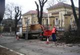 Forest & Harvesting Equipment Hogger - Used Hogger in Romania