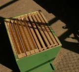 Romania Solid Wood Components - Tilia  Woodturnings - Turned Wood Romania