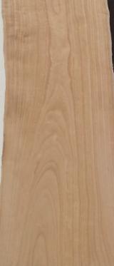 Schnittholz Und Leimholz Paulownia - Paulownia Massivholz Klasse A aus Italien