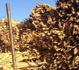Firelogs - Pellets - Chips - Dust – Edgings - Wood Chips - Bark - Off Cuts - Sawdust - Shavings, Used Wood, Beech (Europe)