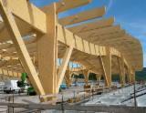 Case Din Lemn Romania - Structuri lemn lamelat incleiat -