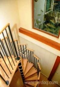 Hardwood-%28Temperate%29--Stairs--Oak-%28European%29