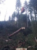 Used Forestry Equipment For Sale - Join Fordaq To See Offers - Skidding - Forwarding, Running Carriage, Konrad