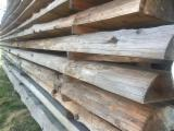 Softwood  Logs For Sale - Saw Logs, Larch (Larix spp.)