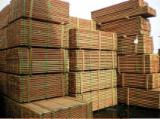 Tropical Wood  Sawn Timber - Lumber - Planed Timber - Goupia glabra Aubl.