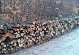 Finden Sie Holzlieferanten auf Fordaq - Buche Brennholz Gespalten