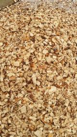 Wood Chips - Bark - Off Cuts - Sawdust - Shavings, Wood Chips From Used Wood, All specie