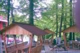 Garden Products - ISO-9000 Spruce (Picea Abies) - Whitewood Kiosk - Gazebo from Romania