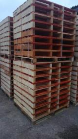 Buy Or Sell Wood Any  Latvia - Half Pallet, New