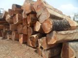 Wälder Und Rundholz Afrika - Schnittholzstämme, Doussie