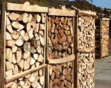 Lemn de foc, brichete/peleţi, deşeuri lemnoase - Lemn de foc fag, stejar, frasin - 395 lei/mster