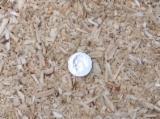 Firelogs - Pellets - Chips - Dust – Edgings - Southern Yellow Pine