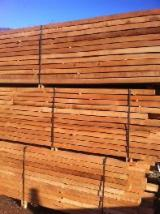 Hardwood  Sawn Timber - Lumber - Planed Timber Steamed > 24 Hours - Beech Planks (boards) A from Romania, Ramnicu Valcea