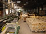 Hardwood  Sawn Timber - Lumber - Planed Timber - Planks (boards) , Beech (Europe)