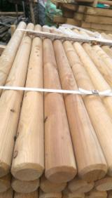 Softwood  Logs For Sale Poland - Larix Machine Rounded Poles Palisade