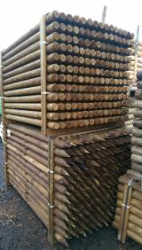 Hardwood Logs For Sale - Register And Contact Companies - Stakes, Sosna