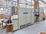 Used 1st Transformation & Woodworking Machinery - Inferior superior sanding line brand DMC mod. Insand Unisand