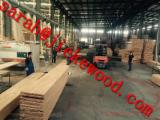 Solid Wood Components Beech Europe - beech panels