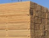 Softwood  Sawn Timber - Lumber - Lumber pine