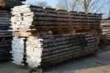 Laubholz  Blockware, Unbesäumtes Holz - Loseware, Ahorn (Bergahorn, Sycamore)