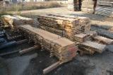 Laubholz  Blockware, Unbesäumtes Holz - Loseware, Birne