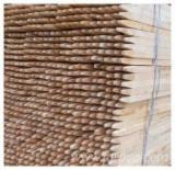 Acacia Hardwood Logs - --- m Acacia  Conical Shaped Round Wood in Romania