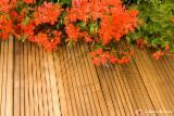 Tuinproducten FSC - Den (Pinus sylvestris) - grenenhout, terrace boards, FSC