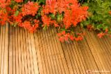 Wholesale Garden Products - Buy And Sell On Fordaq - Pine (Pinus sylvestris) - Redwood, terrace boards, FSC
