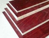 Plywood - Beech -- Special Plywood Romania