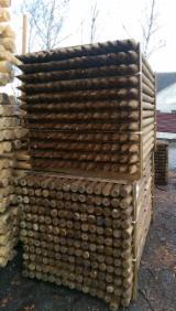 Wood Logs For Sale - Find On Fordaq Best Timber Logs - Poles, Pine (Pinus sylvestris) - Redwood