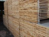 Sawn Timber Pine Pinus Sylvestris - Redwood - Pine (Pinus sylvestris) - Redwood, 90 m3 per month