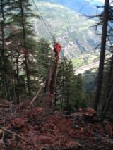 Forest & Harvesting Equipment - New WYSSEN  Grup motor W40 + carucior HY4 Cableway in Romania