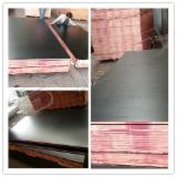 Buy Or Sell  Film Faced Plywood Black Film - 18mm Marine Consturciton Plywood
