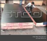 Plywood - Low price 18mm flexible plywood