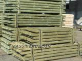 Softwood  Logs For Sale Poland - Machine-rounded poles D12 x 400 cm