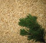 Selling pellets from coniferous trees
