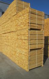 Sawn Timber All Specie - Pallet timber size 22x98x1140