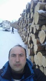 Softwood  Logs For Sale - SİBERİA LARCH PINE LOGS -RUSSIA LARCH PINE LONGS