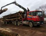 Used Scania 2000 Longlog Truck Romania
