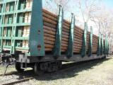 Wood Transport Services - Join Fordaq To Contact Wood Transporters - Train Freight, 5 wagons per month