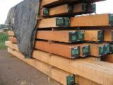 Tropical Wood  Sawn Timber - Lumber - Planed Timber - Jatoba 19-100 mm thick