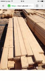 Sawn Timber - Spruce/Pine, 250-300 m3 per month