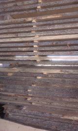 Laubholz  Blockware, Unbesäumtes Holz Rumänien - Loseware, Spitzahorn