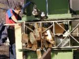 薪材、木质颗粒及木废料 - 劈切薪材 – 未劈切 碳材/开裂原木 榉木