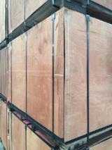 Plywood - Film Faced Plywood ( Brown Film Stora Enso Dynea) 12mm & 18mm